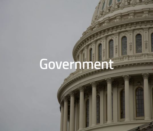 Government (1)